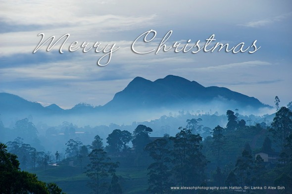 This is how it look during Christmas in Hatton, Sri Lanka